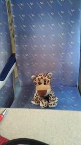 Dans le gros train une fois la peur passée